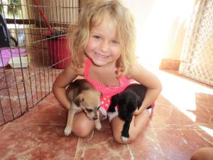 My friend Tiffany's daughter and the cute puppies at Isla Animals