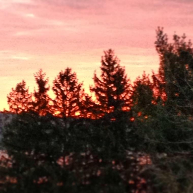 Spring Sunrise at Squirrel Hill