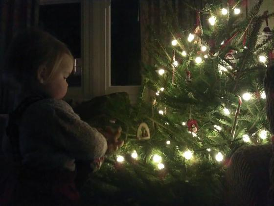 Christmas, tree, child with Christmas tree, wonder, holiday, lights